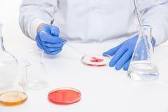 Ansicht von menschliche Hände im Labor bei der Ausführung von Experimenten lizenzfreies stockbild