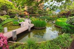 Ansicht von Monaco-Garten, Cote d'Azur Stockfotografie