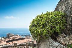Ansicht von Monte Carlo und von Mittelmeer Stockfotos