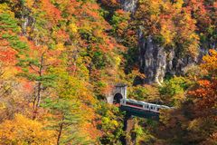 Ansicht von Naruko-Schlucht in der Herbstsaison, Miyagi, Japan Lizenzfreies Stockbild