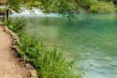 Ansicht von nasser sandiger Bank nahe grünem transparentem Wasser mit Bahnen Stockbilder