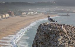 Ansicht von Nazare, Portugal Stockbild