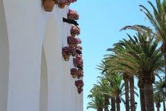 Ansicht von Nerja mit Palmen und Blumen lizenzfreie stockfotografie