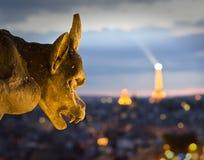 Ansicht von Notre Dame Stockbild