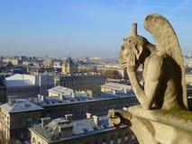 Ansicht von Notre Dame-Turm, Paris Stockbilder