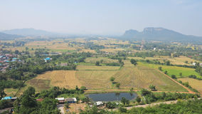 Ansicht von oben genanntem des gepflogenen Reisfeldes, -häuser und -plantagen in einem ländlichen Gebiet von Thailand Lizenzfreies Stockfoto