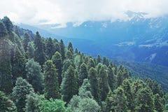 Ansicht von oben genanntem zu den Umgebungen des Skiorts Rosa Khutor Stockfotografie