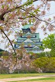 Ansicht von Osaka Castle mit Kirschblüte, japanisches Frühling beautif lizenzfreies stockbild