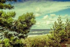 Ansicht von Ostsee stockbilder
