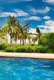 Ansicht von Palmen und von blauem Himmel vom haarscharfen Pool Hainan lizenzfreie stockfotos