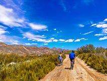 Ansicht von Reitenfahrrädern der Paare auf einem Schotterweg im schönen Parkland lizenzfreie stockfotos