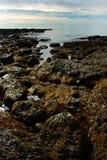 Ansicht von Rocky Shoreline- und Gezeiten-Pools in Maine Lizenzfreie Stockfotos