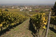 Ansicht von Saint Laurent-DES-vignes stockbilder