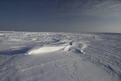 Ansicht von Sastrugi, Wind schnitzte Kanten im Schnee, nahe Arviat, Nunavut Stockfoto