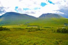 Ansicht von schottischen Hochländern, in Schottland Schönes grünes Gras f Lizenzfreie Stockfotos