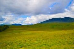 Ansicht von schottischen Hochländern, in Schottland Schönes grünes Gras f Lizenzfreie Stockfotografie