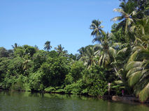 Ansicht von See Ratgama in Sri Lanka Stockfotos