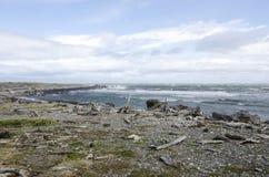 Ansicht von Seno Otway - Patagonia - Chile Stockbild