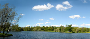 Ansicht von Sommer Landschaft mit See und Baum lizenzfreies stockfoto