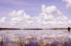 Ansicht von Sommersee. Stockbilder