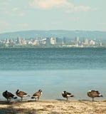 Ansicht von Syrakus, New York Stockfotografie