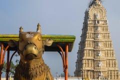 Ansicht von Tempel Sri Chamundeshwari, gelegen auf Chamundi-Hügeln nahe Mysore lizenzfreie stockfotografie
