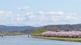 Ansicht von Tenshochi-Park in der Präfektur Iwate, Japan ist für t berühmt lizenzfreie stockbilder