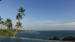 Ansicht von Unendlichkeitsrandpool zu Ozean und Palmen stock video