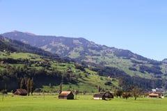 Ansicht von Weiden und von Bergen in der Schweiz Lizenzfreie Stockfotos