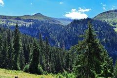 Ansicht von weitem von Wasserstrom Cascada Cailor Stockbilder
