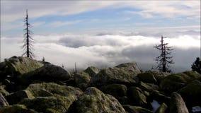 Ansicht von Wolken von oben stock video
