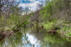 Ansicht von Wurzel-Fluss lizenzfreies stockbild