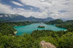 Ansicht zu ausgeblutetem See mit Kirche St. Marys der Annahme auf der kleinen Insel Verlaufen, Slowenien, Europa stockbild