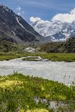 Ansicht zu Beluha-Berg vom Akkem-Tal, Altai, Russland Stockfotografie