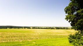Ansicht zu den Feldern Stockfotografie
