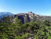 Ansicht zu den schönen Bergen von den grünen Vorderteilen Stockfoto