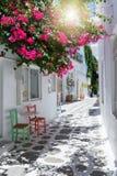 Ansicht zu den typischen kleinen Gassen mit weißen Häusern und zu den bunten Blumen an der cycladic Stadt von Parikia, Paros Stockfoto