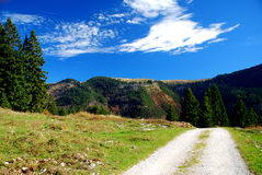 Ansicht zu einem Berg in den bayerischen Alpen Stockfotografie
