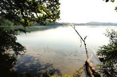 Ansicht zu Laacher sehen See mit seinen Bäumen lizenzfreie stockbilder