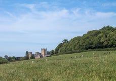 Ansicht zu Wells-Kathedrale Stockbild