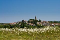 Ansicht zu Zminj und das Feld mit den Blumen Stockfotos