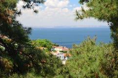 Ansicht zum Meer von Marmura vom Kiefernwaldfokus auf dem Meer Der Prinz Islands, die Türkei stockbilder