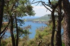 Ansicht zum Meer von Marmura vom Kiefernwaldfokus auf dem Meer Der Prinz Islands, die Türkei stockfoto