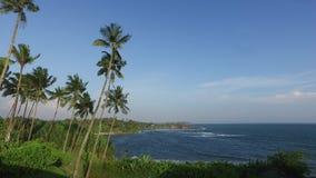 Ansicht zum Ozean von Sri Lanka-Insel mit Palmen stock footage