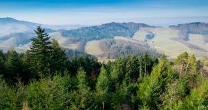 Ansicht zum schwarzen Wald nahe Oberkirch stockfotografie