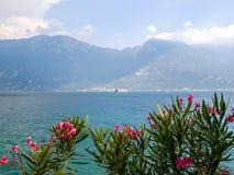 Ansicht zum See Garda mit den Blumen eines Neriumoleanderstrauchs im Vordergrund und der Fähre im Hintergrund Lizenzfreie Stockfotografie