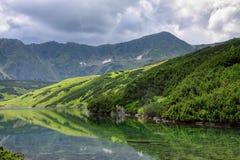 Ansicht zum See, zu den niedrigen Kiefern, zum grünen Hügel und zu den felsigen Bergen Lizenzfreies Stockbild