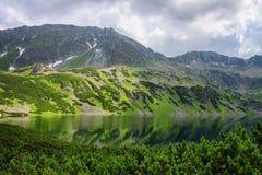 Ansicht zum See, zu den niedrigen Kiefern, zum grünen Hügel und zu den felsigen Bergen Stockfotos