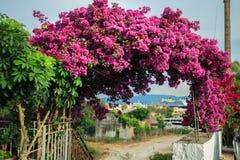 Ansicht zum Seehafen von Korfu lizenzfreies stockbild
