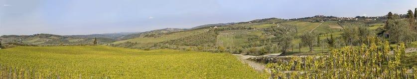 Ansicht zur Stadt Chastellina im Chianti mit Weinbergen in Toskana herein Lizenzfreies Stockfoto